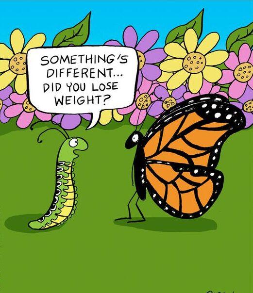 Vtipný jarní obrázek se stonožkou a motýlem.