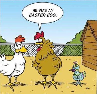 Obrázek s obarveným velikonočním kuřátkem.
